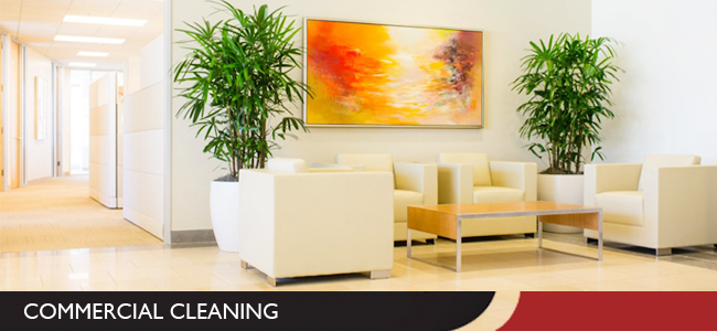 Office, Business and Commercial Cleaning in Evansville, IN