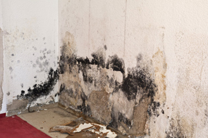 Evansville, Indiana water and fire damage restoration